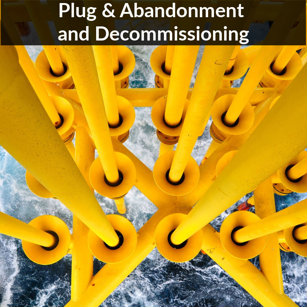 Plug & Abandonment and Decommissioning - Service